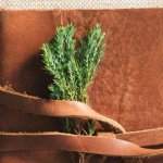 Leather bound book with branch on a textured background